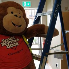 Teddy Mascot on a ladder